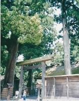 2000.7奈良・三重旅行�H.jpg