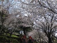 '15.3.29橘神社�E.JPG