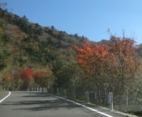 '16.11.16仁田峠道路.JPG