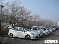 '18.3.25本野温泉駐車場桜.JPG