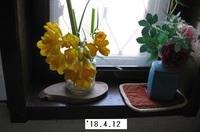 '18.4.12フリージア.JPG