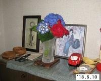 '18.6.10アジサイ切り花.JPG