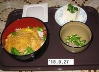 '18.9.27ヒレカツ丼他.JPG
