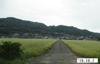 '19.10.7森山地区の田んぼ.JPG