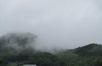 '19.6.29霧がかかった山.JPG