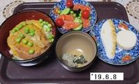 '19.6.8かつ丼・サーモンマリネ他.JPG