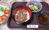 '19.7.5冷やしソーメン・ゴマサバ丼.JPG