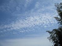 '19.9.25雲.JPG