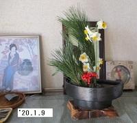 '20.1.9松と水仙.JPG
