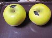 '20.11.23リンゴ.JPG