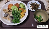 '20.3.15レンコンと豚肉の炒め煮他.JPG