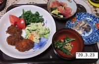 '20.3.23ソーストンカツ・ポテサ他.JPG