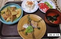 '20.4.14タケノコとツワの煮物.JPG
