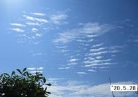 '20.5.28雲.JPG
