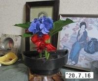 '20.7.16活花.JPG