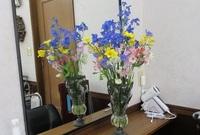 '21.2.16春の花.JPG