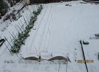 '21.2.18雪の畑�@.JPG