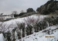'21.2.18雪の畑�A.JPG