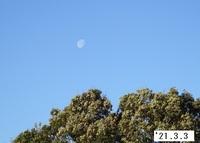 '21.3.3朝の月.JPG
