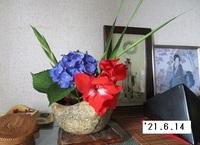 '21.6.14活花.JPG
