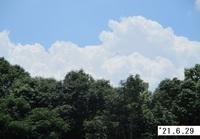 '21.6.29雲�A.JPG