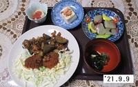 '21.9.9ナスと豚肉の梅味噌炒め他.JPG