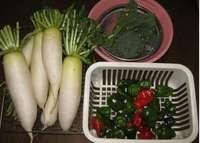 '11.11.23野菜収穫.jpg