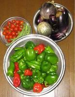'11.9.11野菜の収穫.jpg