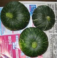 '12.6.12野菜収穫�A.jpg