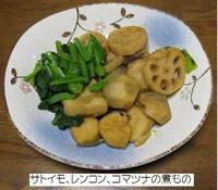 サトイモ、レンコン、コマツナの煮もの.jpg