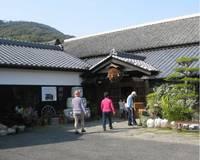 大崎半島ウォーキング�S梅が江酒造.jpg