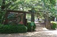 野岳湖自然公園�@.jpg
