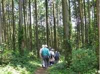 野岳湖自然公園�H.jpg
