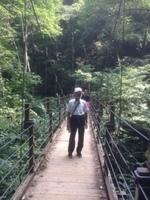 高尾山�Fみやま橋(つり橋).jpg