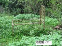 高峰展望台(湯野尾町)ウォーキング�D.jpg